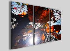 Fantasia di colori con Mirroles Foliage un quadro moderno di forte impatto