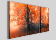 Quadri su tela Intensity autumn stampe su tela canvas