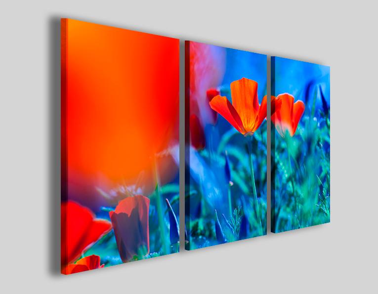Quadri moderni fiori Poppis stampe canvas - 30ArtGallery