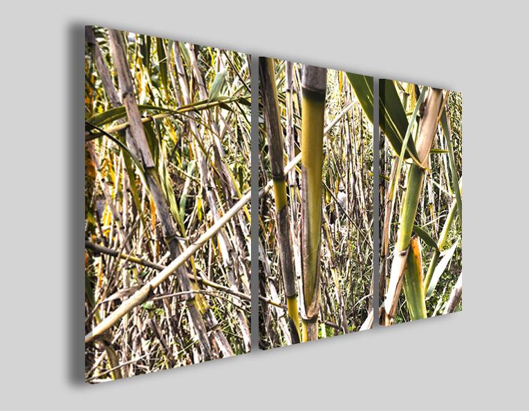 Quadri bamboo art 100 stampe fiori natura