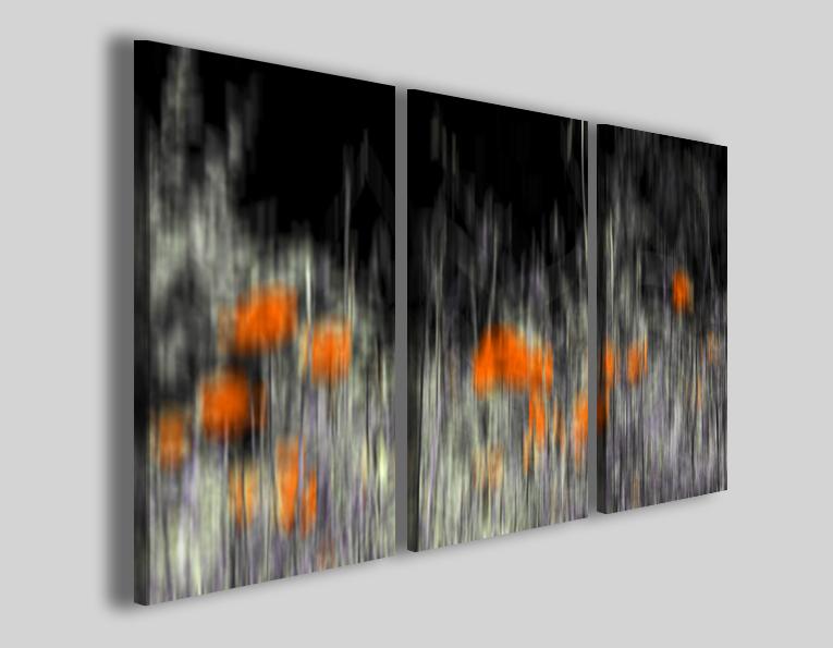Quadri fiori art 92 stampe moderne
