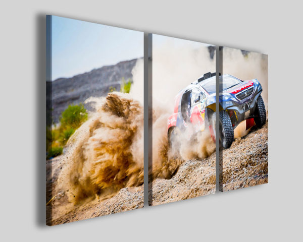 Quadri auto rally art 4273 stampe auto su canvas