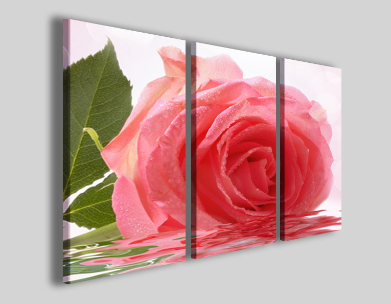 Quadro rosa Beautiful rose II stampe fiori
