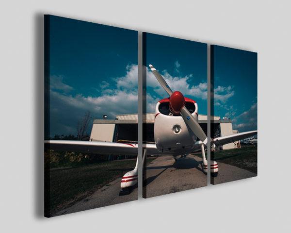 Quadri aereo Cap10 I stampe aeronautica aereo acrobatico