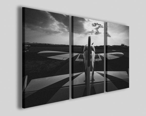 Quadri di aerei Cap10 II stampe aeronautica aereo acrobatico