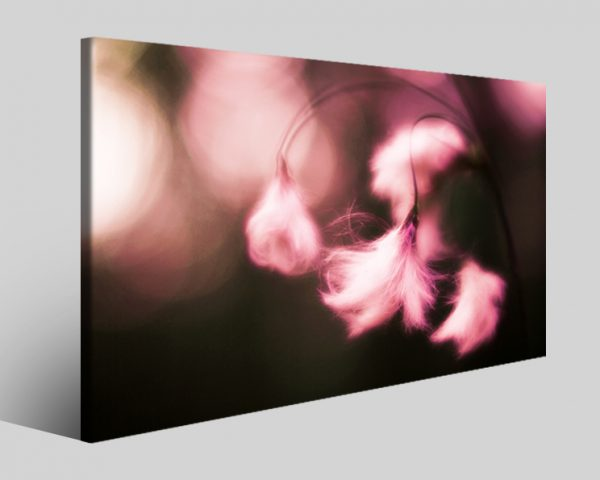 Quadro fiori Croped stampa su tela