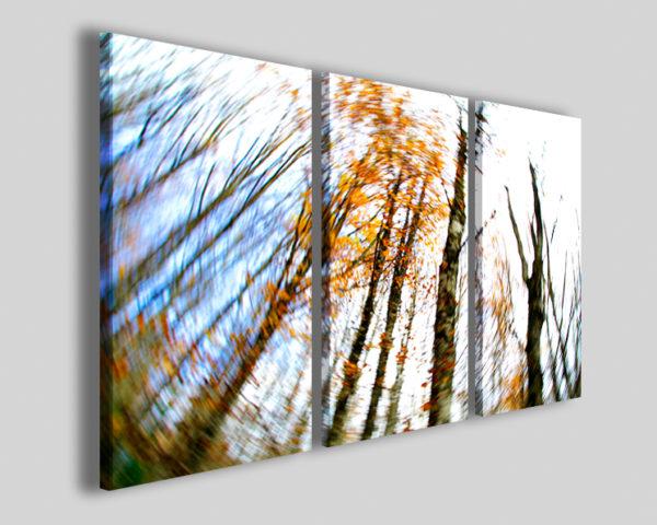 Quadri natura e paesaggi Dinamic tree stampa su canvas