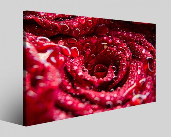 Quadro fiori Droplets stampa su tela
