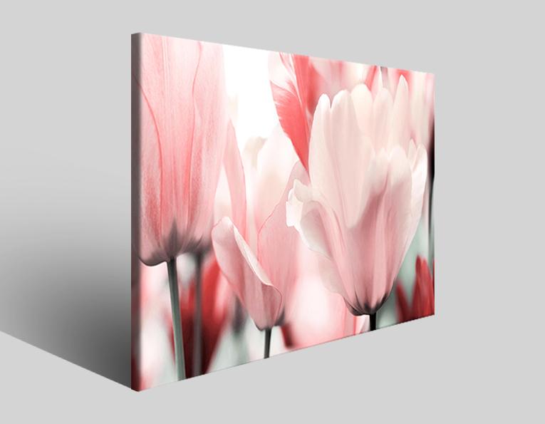 Stampe su tela Pinkass quadro fiori rosa