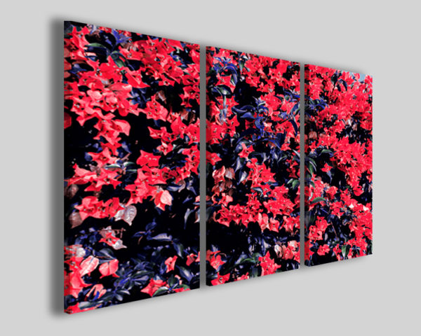 Quadri moderni Puntite flowers stampe fiori