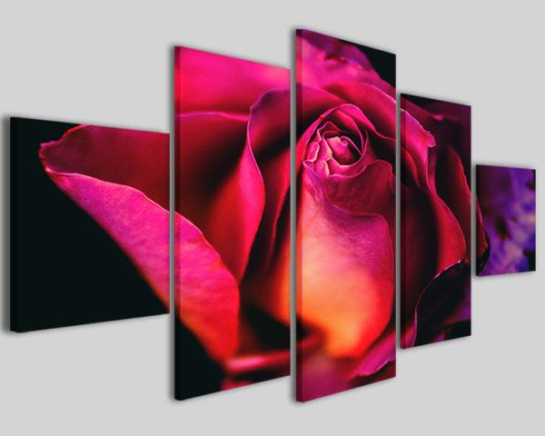 Quadro grande formato Purple rose stampa rosa