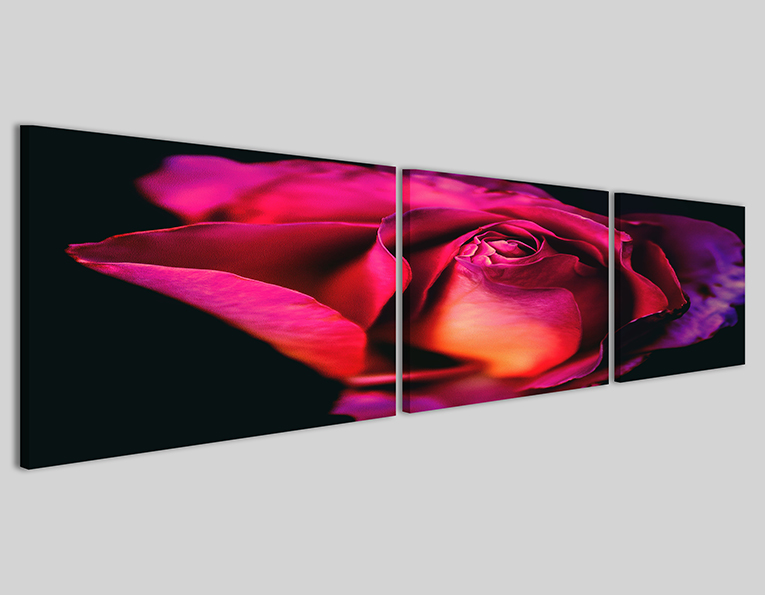 Quadro Purple rose stampa decorazione parete grande