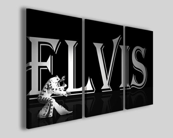 Quadri Elvis presley live stampe