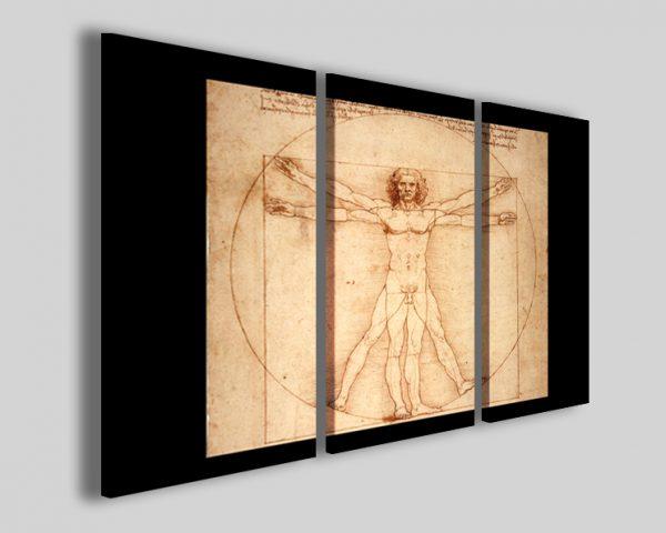 Quadri Leonardo da vinci Human study stampe