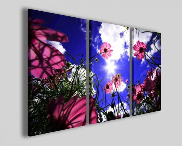 Quadri fiori viola Light among flower stampe moderne