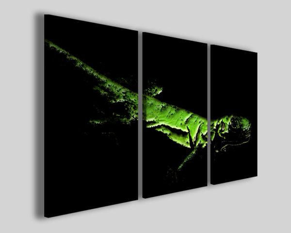 Quadri moderni Iguana stampe moderne