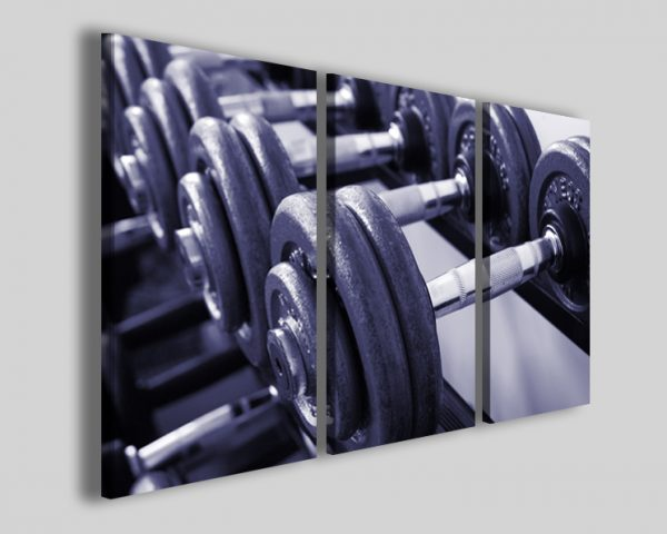 Quadro Workout