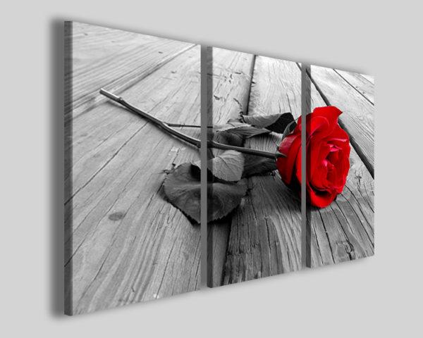 Quadri su tela Red rose lign stampe canvas rosa rossa