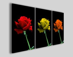 Quadri su tela Rose mix stampe moderne canvas