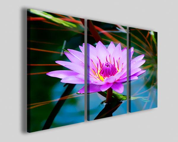 Quadri fiori Stain flower stampe canvas fiore di loto