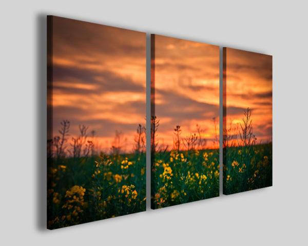 Stampe su tela Gelbich quadro campo di fiori