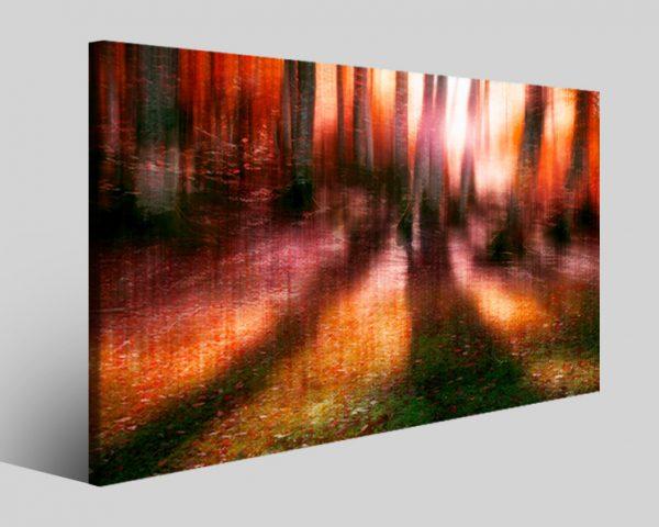 Quadro natura Sunlight stampa su tela