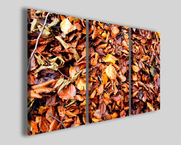 Quadri foglie Tapete of foliage stampe autunno