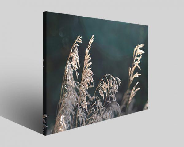 Quadro moderno astratto Tezt 122 stampa su tela