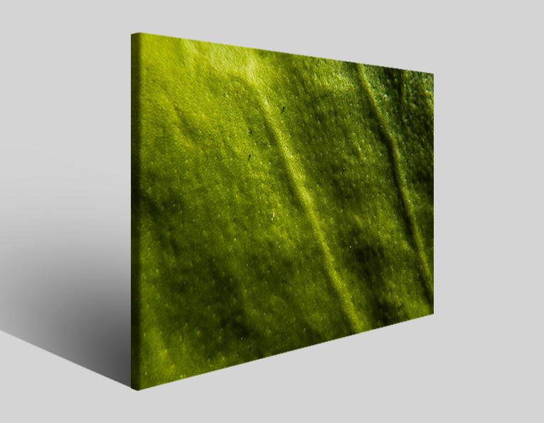 Quadro moderno astratto Tezt 287 stampa su tela