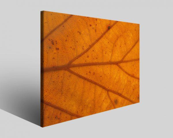 Quadro moderno astratto Tezt 83 stampa su tela