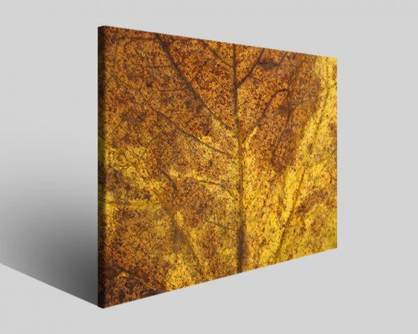 Quadro moderno astratto Tezt 85 stampa su tela