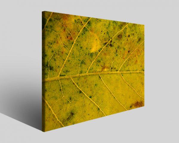 Quadro moderno astratto Tezt 86 stampa su tela