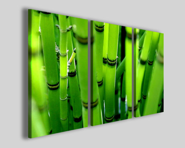Quadri moderni Bambù stampe etniche