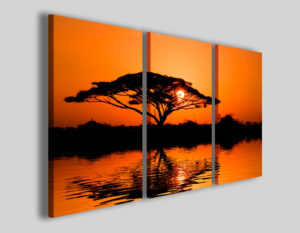 Quadri africani Beautiful african sunrise stampe africa