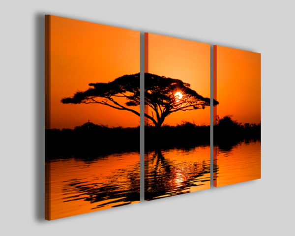 Quadri africani Beautiful african sunrise stampe africa