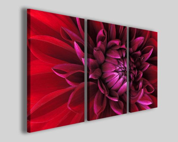 Quadri con fiori Marcate flower stampa fiore