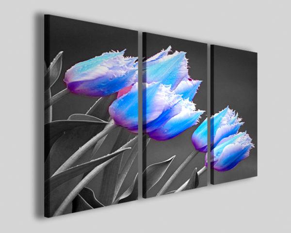 Quadro per salotto divano cucina Monocromate tulips stampa