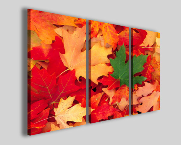 Quadri moderni One green in red foliage stampe canvas