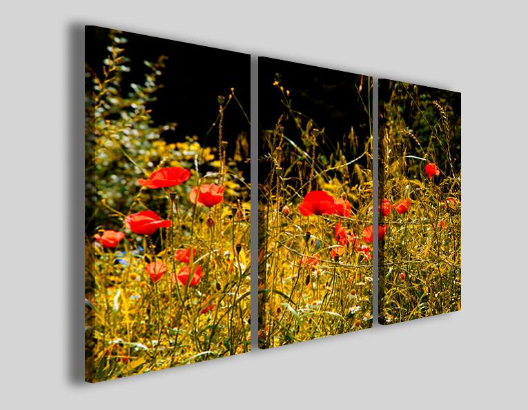 Quadri con fiori Papaveri stampe campo di papavero rosso