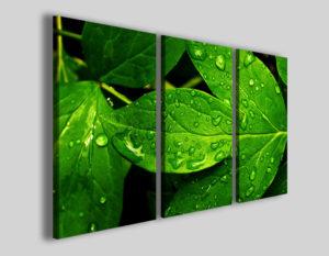 Quadri moderni Patinate foliage stampe canvas