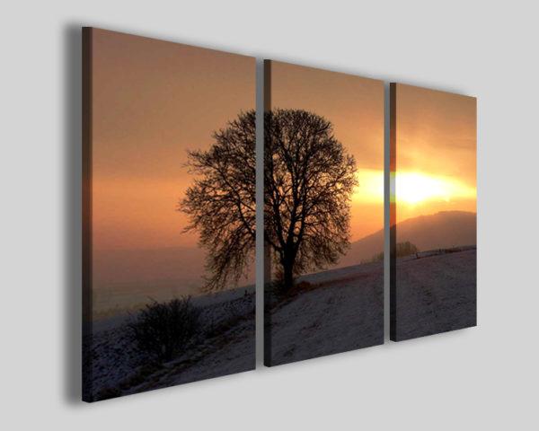 Quadro su tela Solitary black tree tele moderne