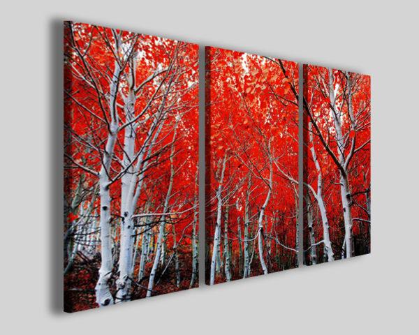 Quadro con alberi White tunk stampe foglie natura