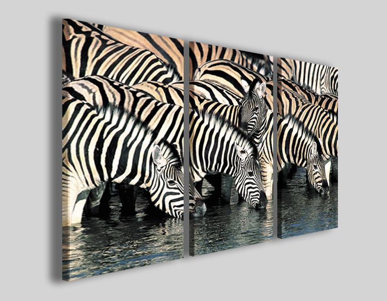Quadri animali Zebra stampe immagini zebre savana
